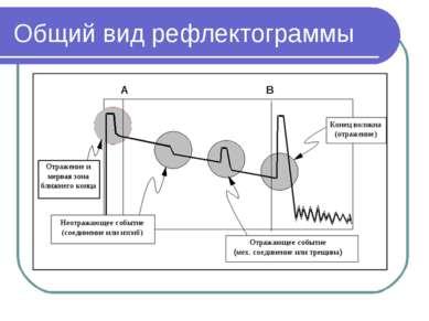 Общий вид рефлектограммы
