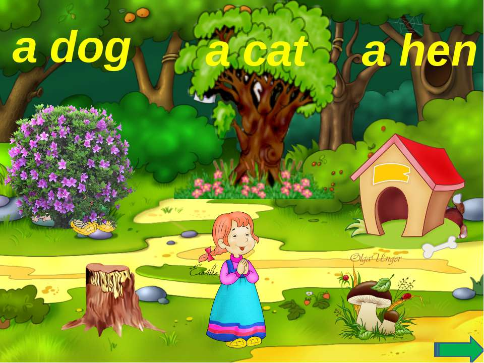 a dog a hen a cat