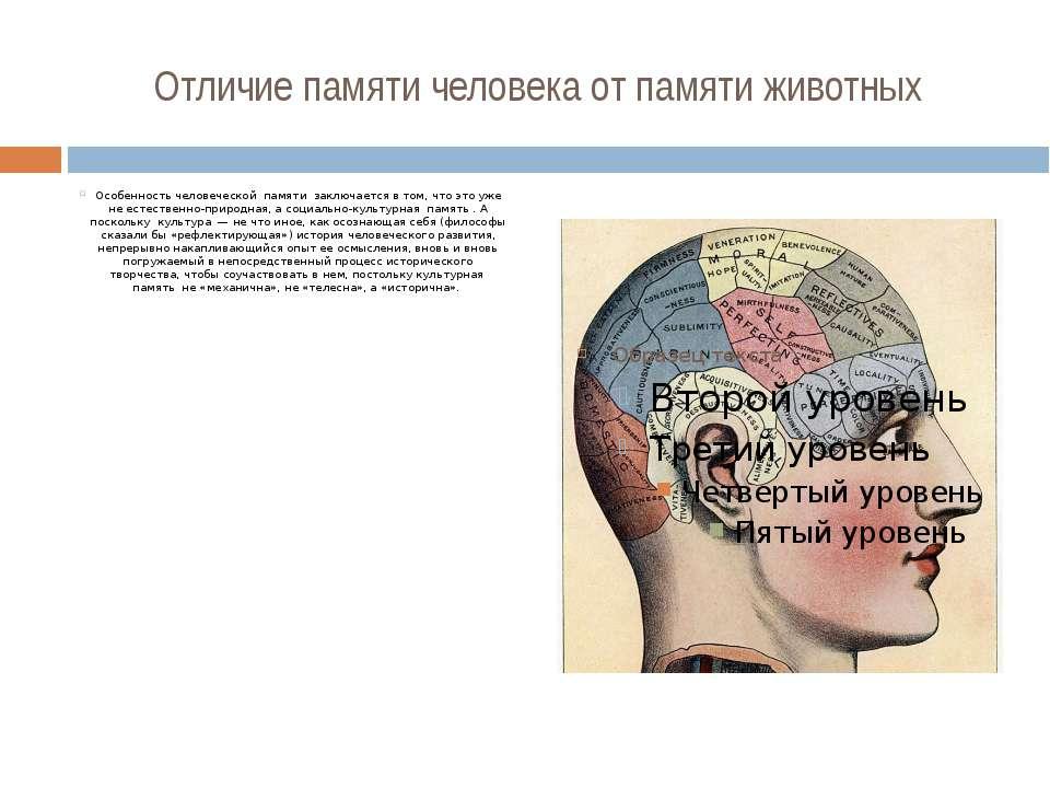 Отличие памяти человека от памяти животных Особенность человеческой памяти за...