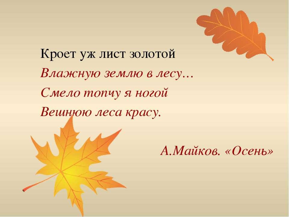 стихи про осенние листья короткие и красивые архиве сбу обнаружил