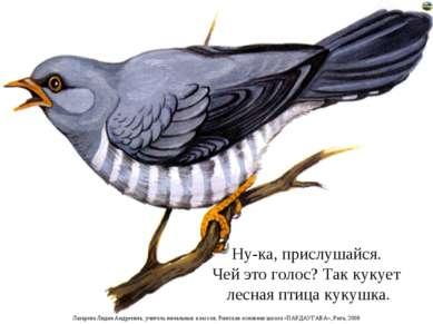 Ну-ка, прислушайся. Чей это голос? Так кукует лесная птица кукушка. Лазарева ...