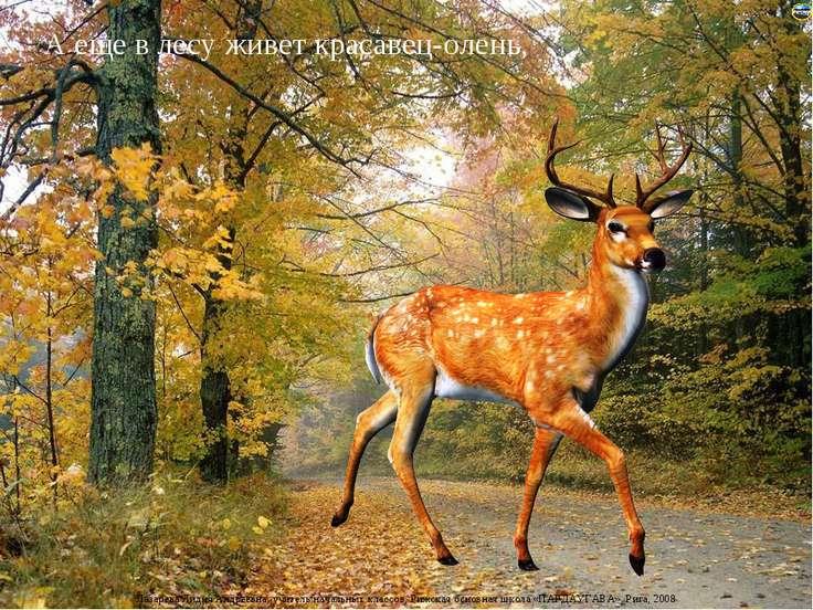 А еще в лесу живет красавец-олень, Лазарева Лидия Андреевна, учитель начальны...