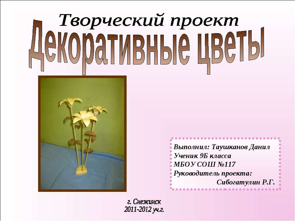 Выполнил: Таушканов Данил Ученик 9Б класса МБОУ СОШ №117 Руководитель проекта...