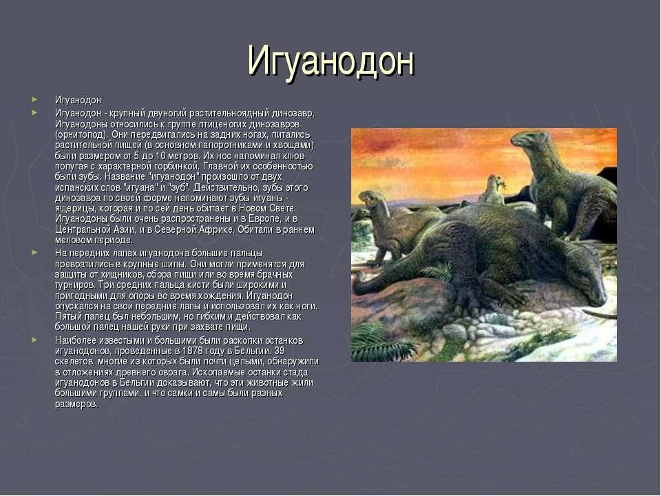 Игуанодон Игуанодон Игуанодон - крупный двуногий растительноядный динозавр. И...