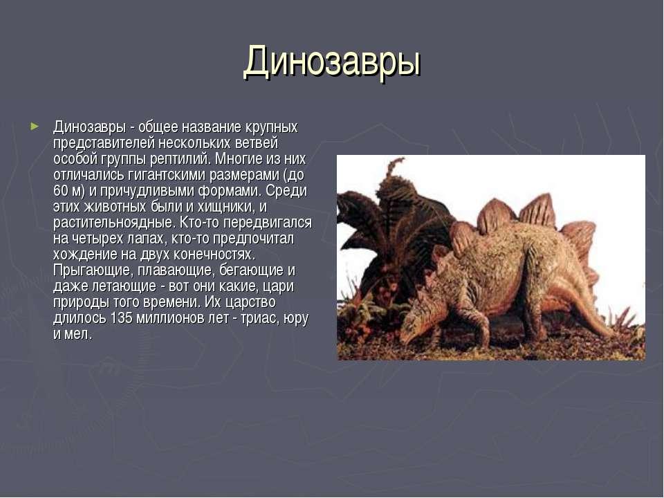 Динозавры Динозавры - общее название крупных представителей нескольких ветвей...