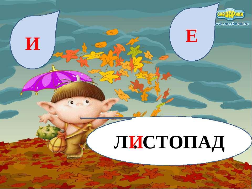 Л . СТОПАД И Е И