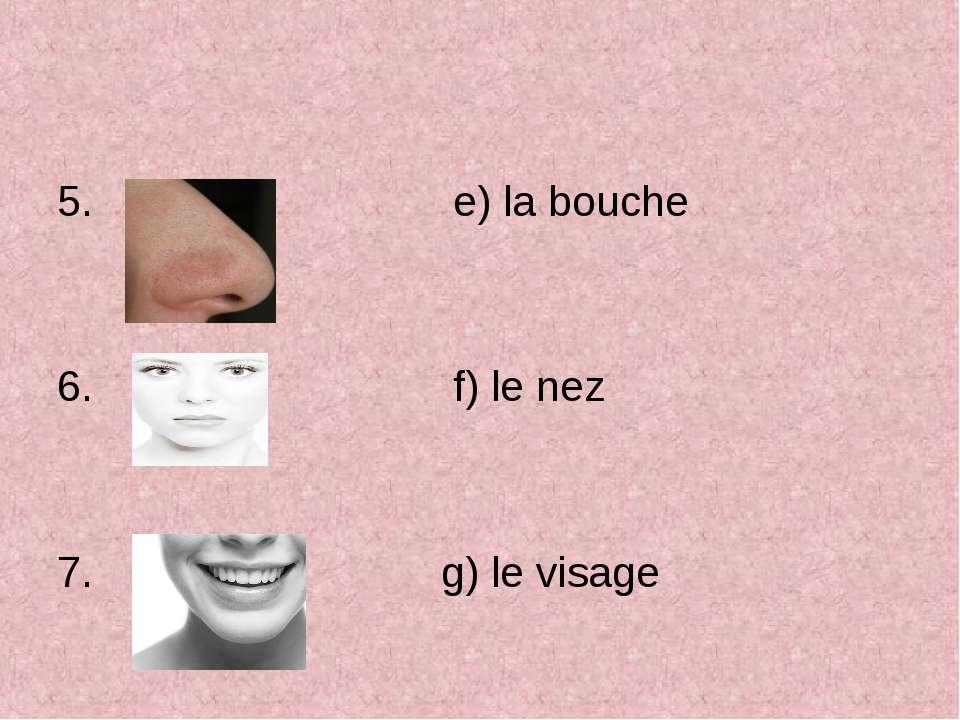 e) la bouche f) le nez g) le visage