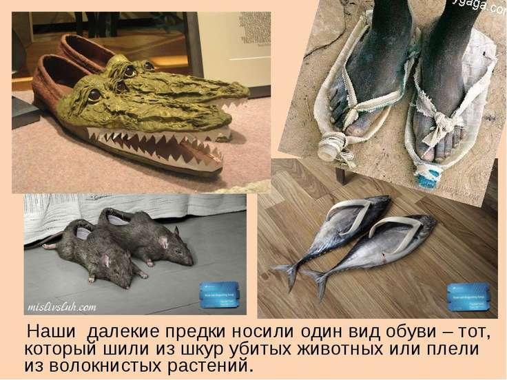 Наши далекие предки носили один вид обуви – тот, который шили из шкур убитых ...