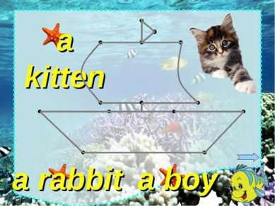 a boy a rabbit a kitten