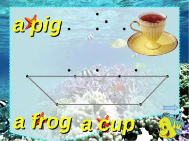 a frog a pig a cup