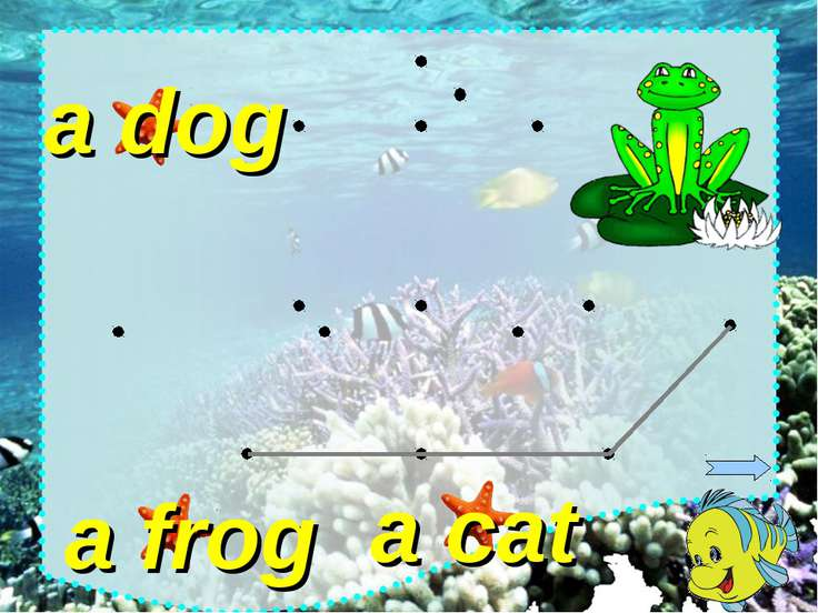 a cat a dog a frog
