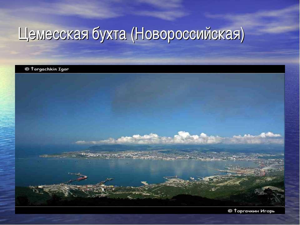 Цемесская бухта (Новороссийская)