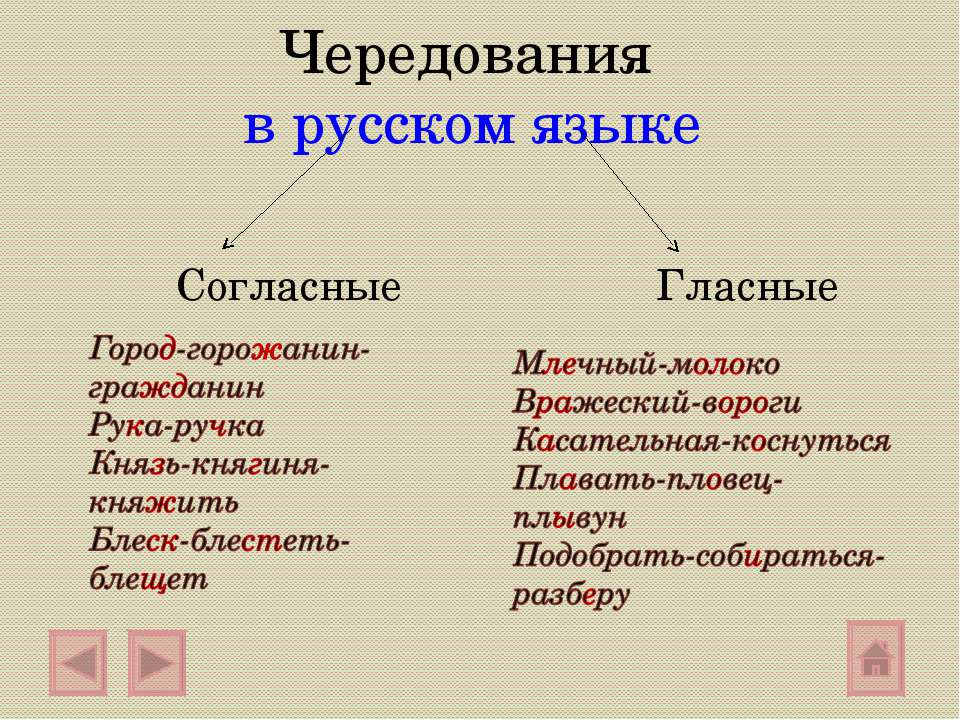 Чередования в русском языке Согласные Гласные