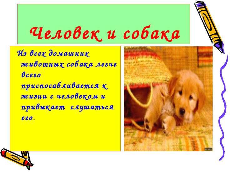 Человек и собака Из всех домашних животных собака легче всего приспосабливает...