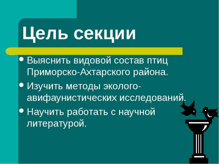 Цель секции Выяснить видовой состав птиц Приморско-Ахтарского района. Изучить...