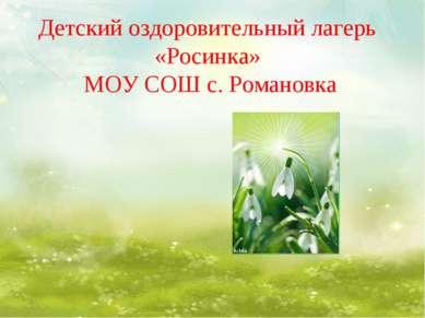 Детский оздоровительный лагерь «Росинка» МОУ СОШ с. Романовка