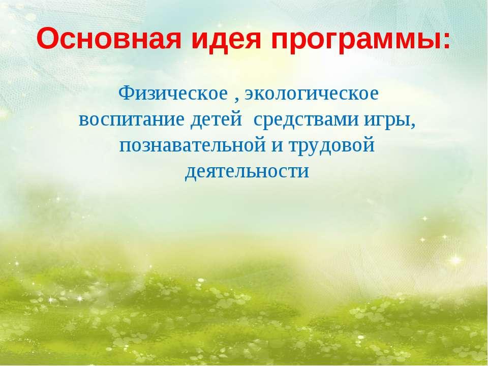 Основная идея программы: Физическое , экологическое воспитание детей средства...