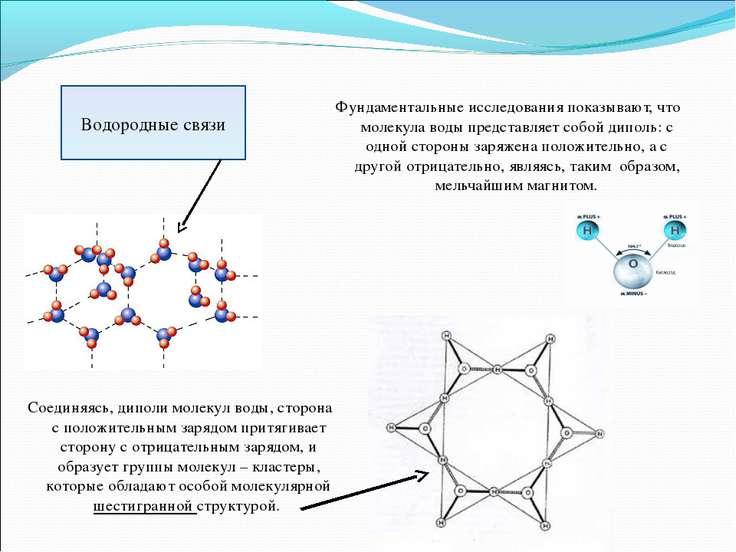 Фундаментальные исследования показывают, что молекула воды представляет собой...