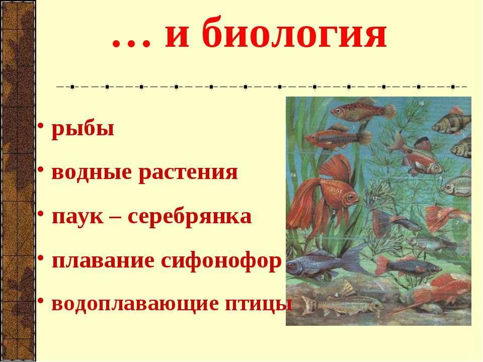 … и биология рыбы водные растения паук – серебрянка плавание сифонофор водопл...