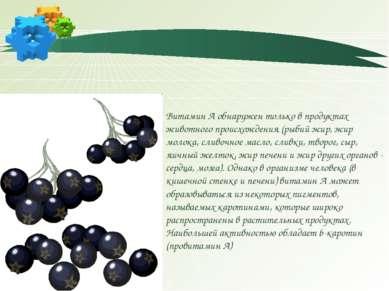 Витамин А обнаружен только в продуктах животного происхождения (рыбий жир, жи...