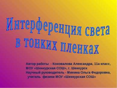 Автор работы - Коновалова Александра, 11а класс, МОУ «Шенкурская СОШ», г. Шен...