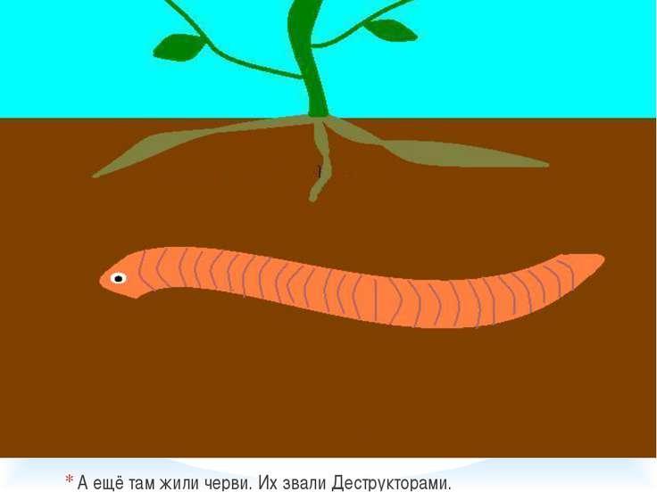 А ещё там жили черви. Их звали Деструкторами.