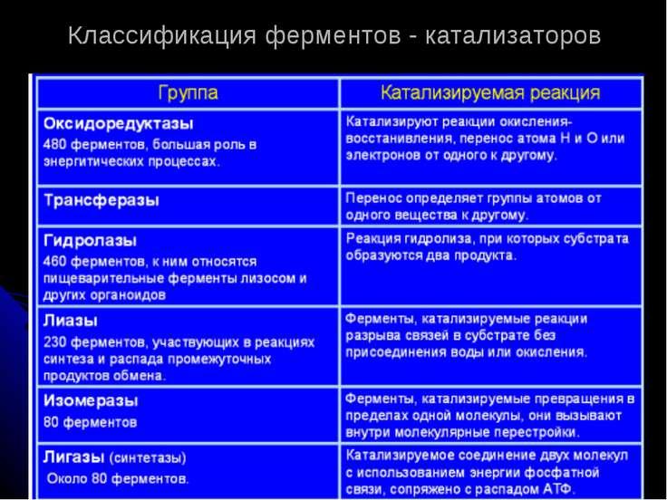 Классификация ферментов - катализаторов