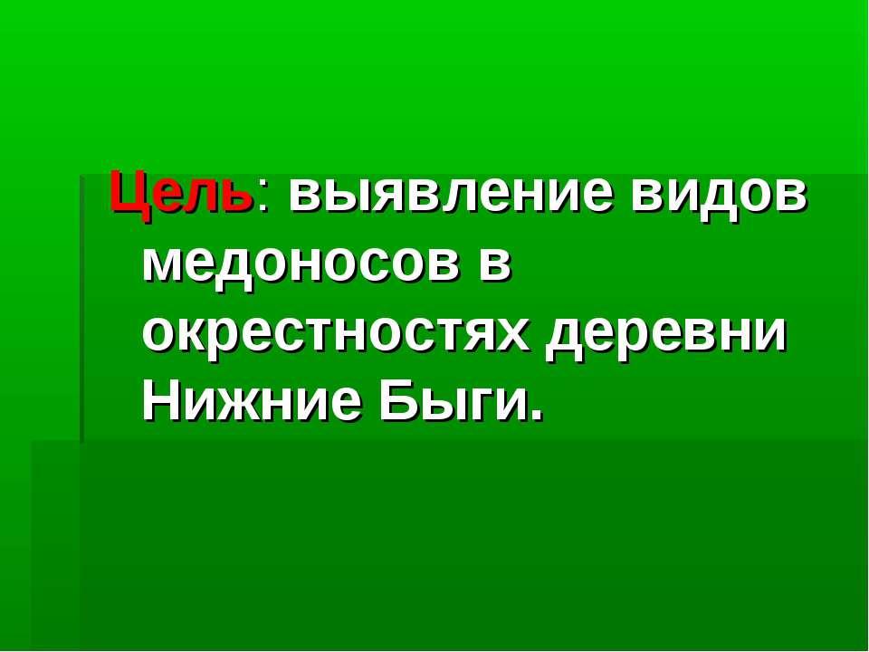 Цель: выявление видов медоносов в окрестностях деревни Нижние Быги.