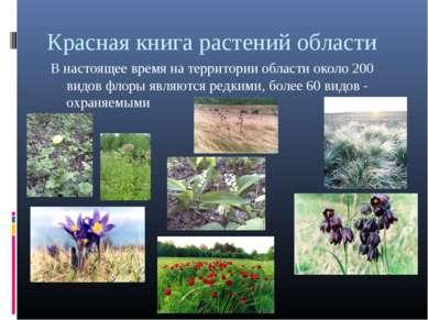Красная книга растений области В настоящее время на территории области около ...