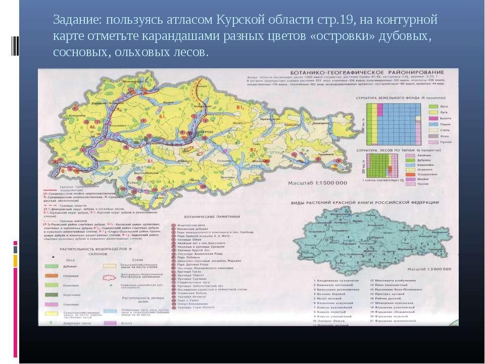 Задание: пользуясь атласом Курской области стр.19, на контурной карте отметьт...