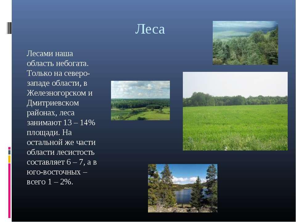 Леса Лесами наша область небогата. Только на северо-западе области, в Железно...