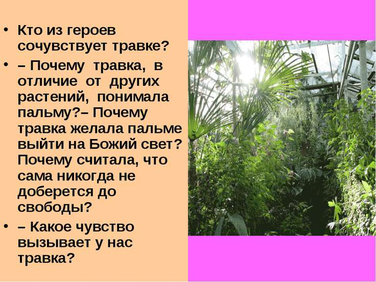 Кто из героев сочувствует травке? –Почему травка, в отличие от других растен...