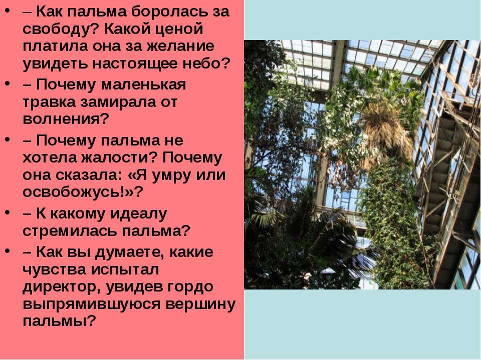 –Как пальма боролась за свободу? Какой ценой платила она за желание увидеть ...