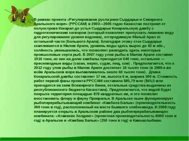 В рамках проекта «Регулирование русла реки Сырдарьи и Северного Аральского мо...