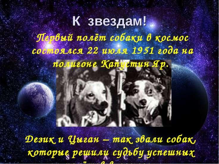 К звездам! Первый полёт собаки в космос состоялся 22 июля 1951 года на полиго...