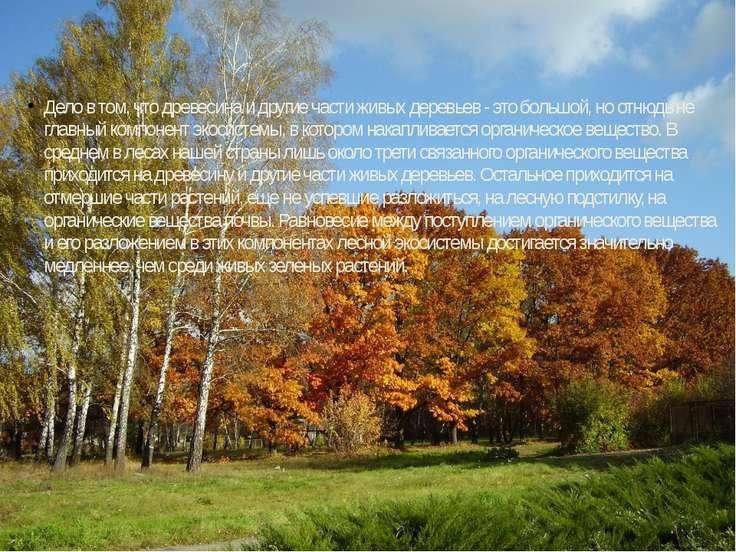 Дело в том, что древесина и другие части живых деревьев - это большой, но отн...
