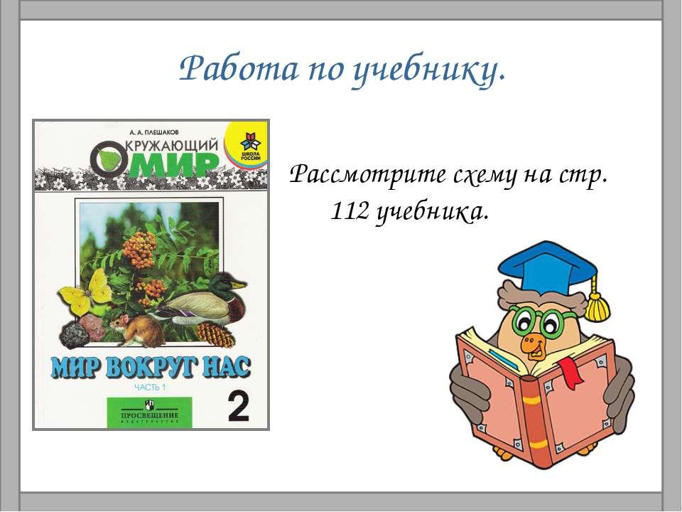Работа по учебнику. Рассмотрите схему на стр. 112 учебника.