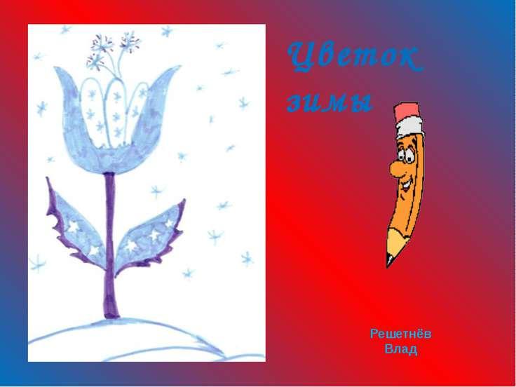 Цветок зимы Решетнёв Влад