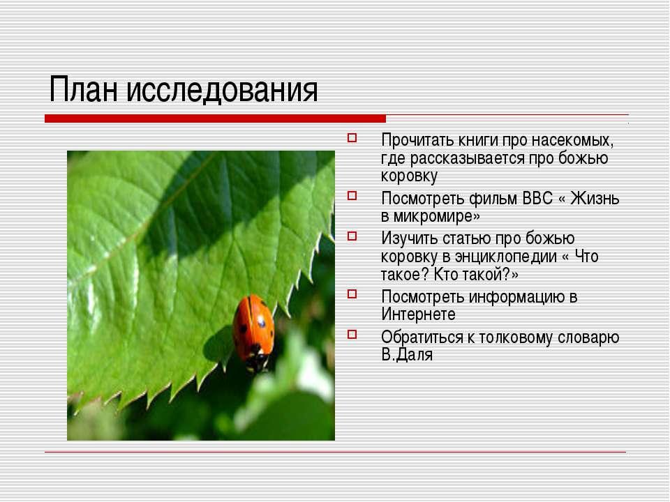 План исследования Прочитать книги про насекомых, где рассказывается про божью...