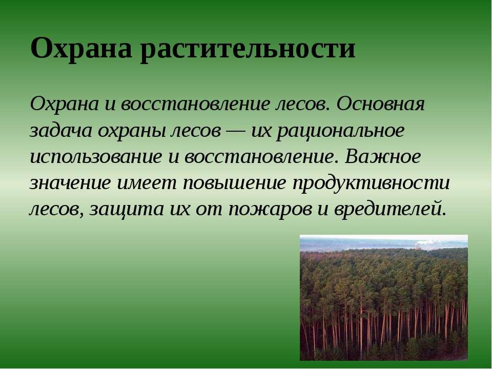 Охрана растительности Охрана и восстановление лесов. Основная задача охраны л...