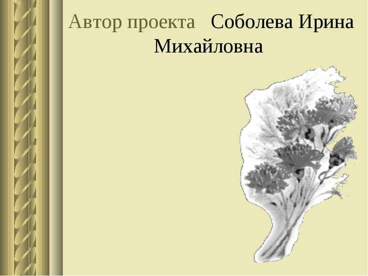 Автор проекта Соболева Ирина Михайловна