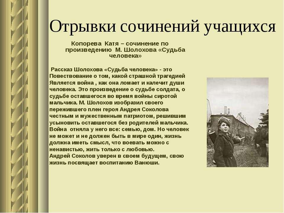 Отрывки сочинений учащихся Копорева Катя – сочинение по произведению М. Шолох...