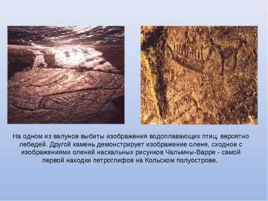 На одном из валунов выбиты изображения водоплавающих птиц, вероятно лебедей. ...