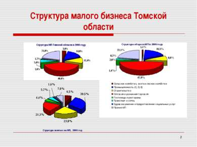 * Структура малого бизнеса Томской области