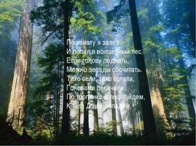 По канату я залез И попал в волшебный лес. Если голову поднять, Можно звезды ...