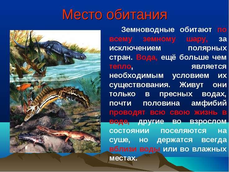 Место обитания Земноводные обитают по всему земному шару, за исключением поля...