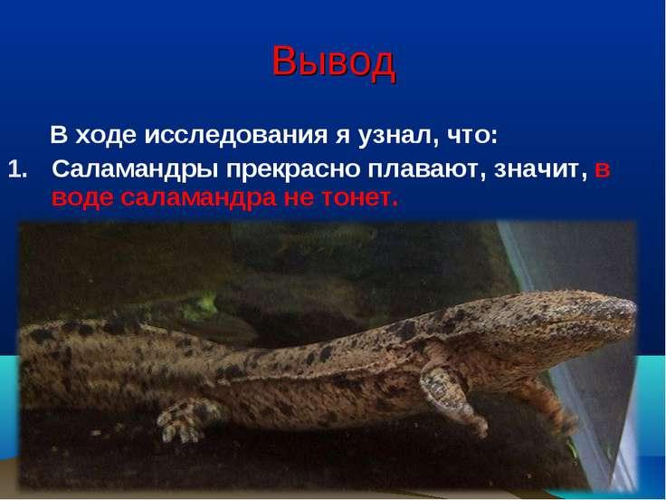 Вывод В ходе исследования я узнал, что: Саламандры прекрасно плавают, значит,...