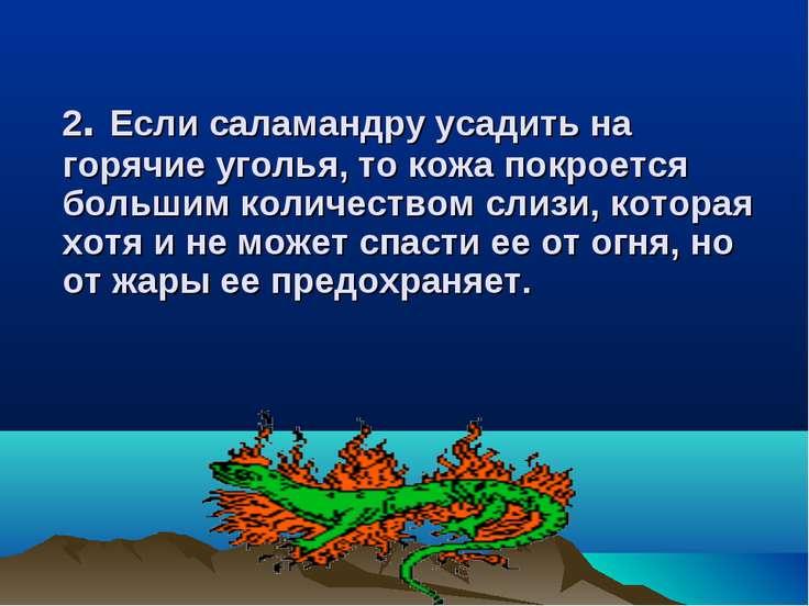 2. 2. Если саламандру усадить на горячие уголья, то кожа покроется большим ко...