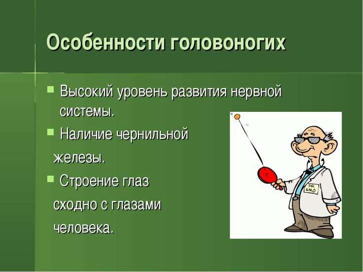 Особенности головоногих Высокий уровень развития нервной системы. Наличие чер...