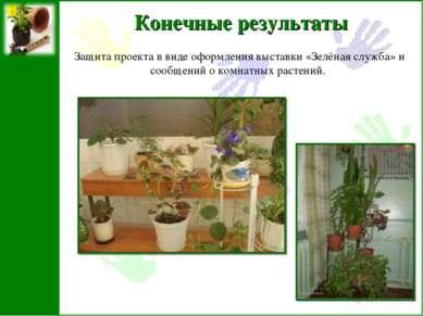 Конечные результаты Защита проекта в виде оформления выставки «Зелёная служба...